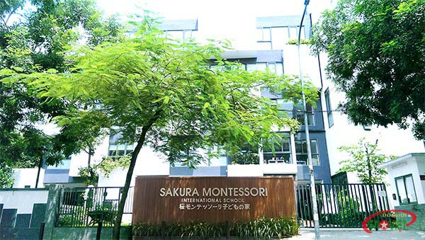 trường mầm non quốc tế sakuara montessori cầu giấy hà nội