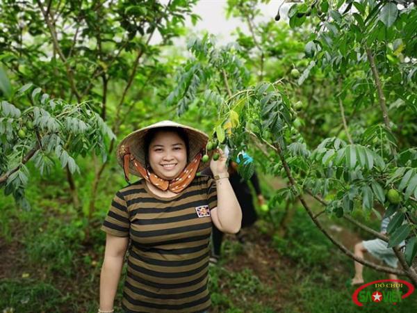"""Ghé thăm Vườn Trái Cây Long Khánh, ăn """"buffet trái cây"""" đã miệng"""